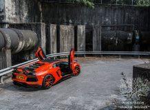 Фото Aventador LP900 Molto Veloce