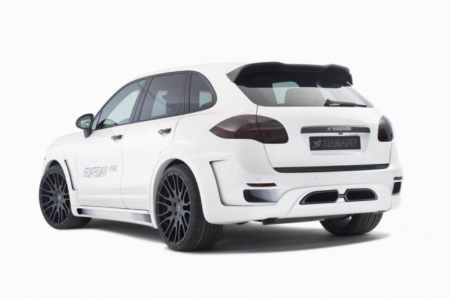 Hamann Guardian Evo фото